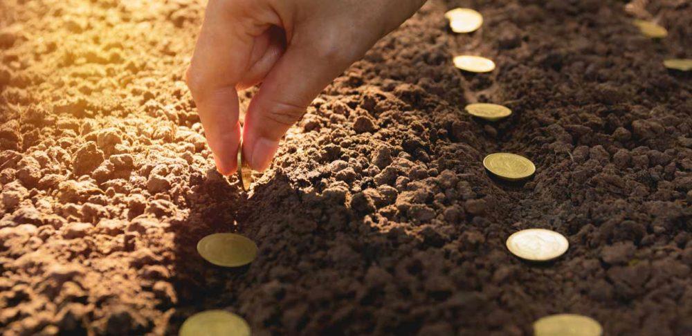 capital semente